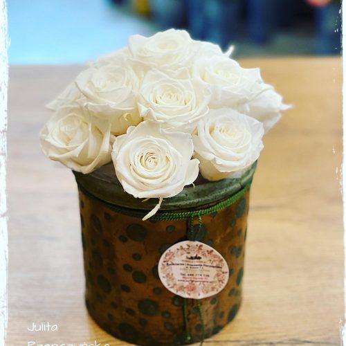 box - wieczne róże w naczyniu ALURO